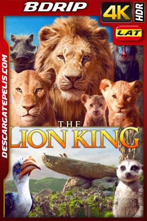 El rey león (2019) 4K BDRip HDR Latino – Ingles