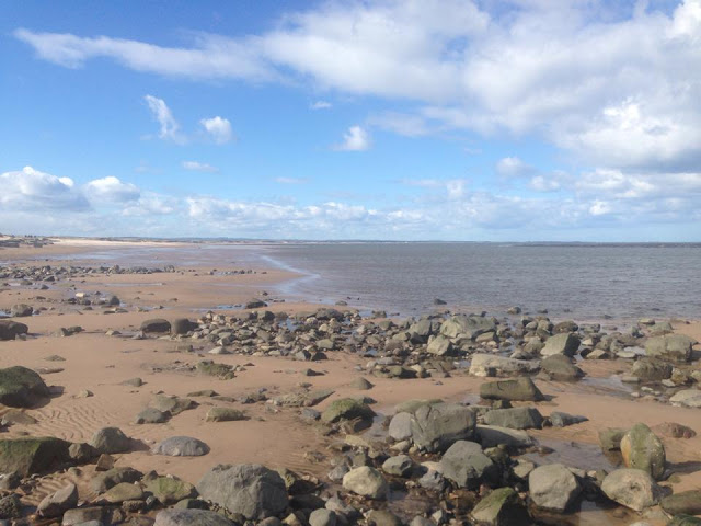 Cresswell Towers Review & Things To Do Nearby