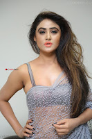 Sony Charishta in Saree Deep neck Choli ~  Exclusive 16.JPG