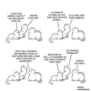 Putain de chat T7 - Grisbi raconte l'arrivée du chien à ses copains chats