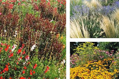 Jardín Sostenible Ciudades de Colores
