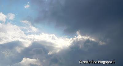 sagra montombraro nuvole confetture sali aromatici petali ed erbe per tisane della fattoria didattica dell ortica a Savigno Valsamoggia Bologna in Appennino vicino Zocca