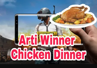 arti chicken dinner