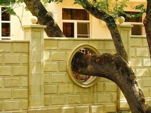 Constructions that have respected trees