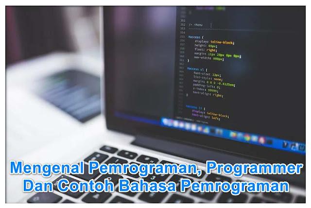 Apa Itu Pemrograman, Programmer, Jenis-Jenis Programmer Dan Contoh Bahasa Pemrograman