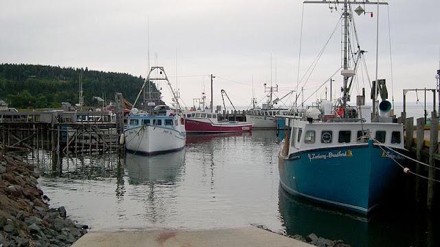 Baia de Fundy - maré cheia