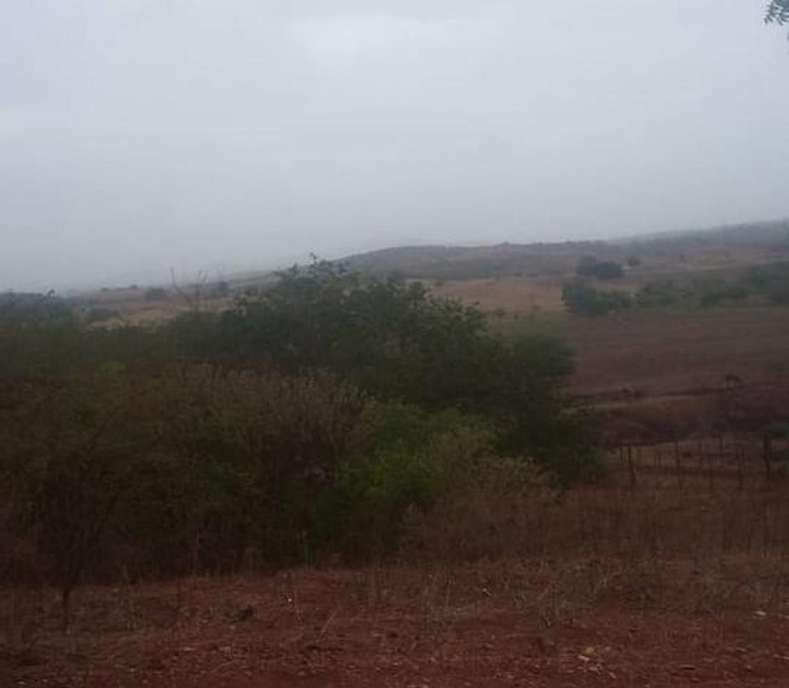 Sítio Tipi, em Aurora, registra chuva; previsão é de continuidade, diz Funceme