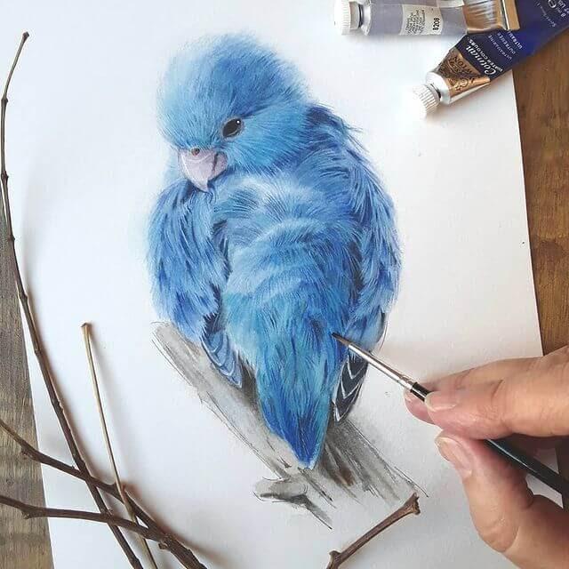 10-Baby-Blue-parrot-Anna-Llorens-www-designstack-co