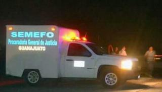 Hallan 3 encajuelados y con el tiro de gracia en Guanajuato