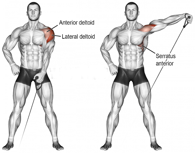 Side Lateral Raises With Cabels