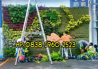 Jasa Pembuatan Taman Vertikal Garden di Cimanggu City | Taman Vertikal | Jasatamanvertikalgarden.blogspot.com