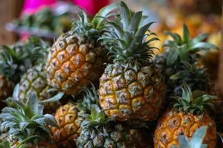 Ananas opis działanie leczenie ziołolecznictwo