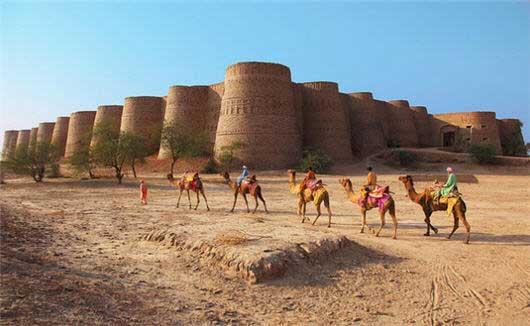 Derawar Fort Camel Riding