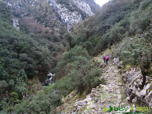 Río Rubó, Peñamellera Alta