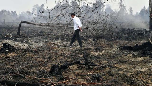 Tak Ada Cara Lain, Hanya Tuhan yang Bisa Padamkan Kebakaran Lahan di Riau dan Kalimantan