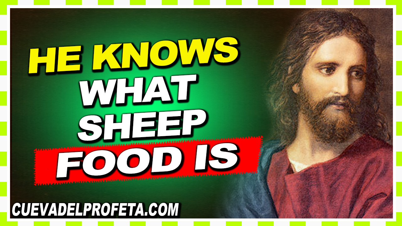He knows what sheep food is - William Marrion Branham
