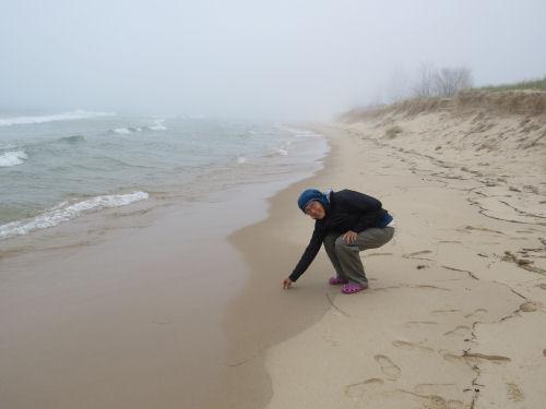 person picking up a rock on Lake Michigan beach