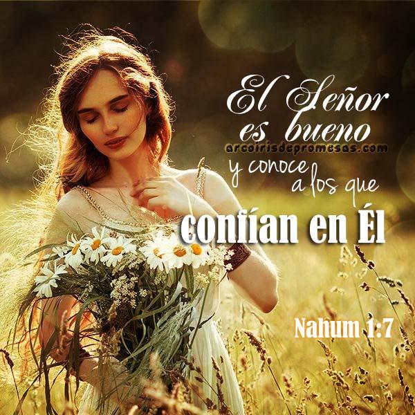 el señor es bueno y te conoce reflexiones cristianas con imágenes arcoiris de promesas