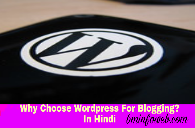 Why Choose Wordpress For Blogging? In Hindi