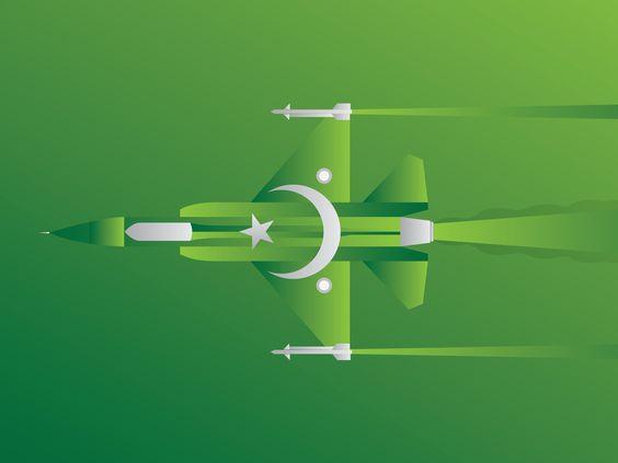 Pakistani%2BFlag%2BHoly%2BDay%2B%252839%2529