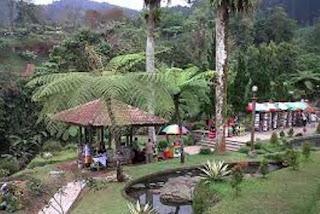 Aneka satwa di Taman Kaloka Widya Mandala Baturaden