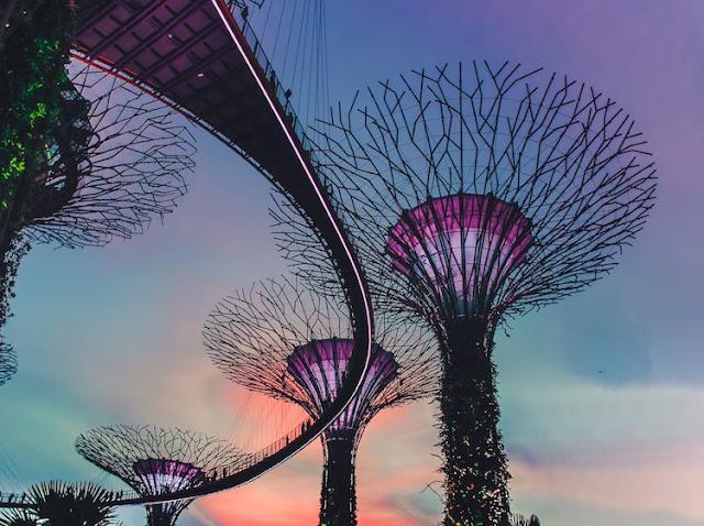 Nên đi du lịch singapore vào tháng mấy
