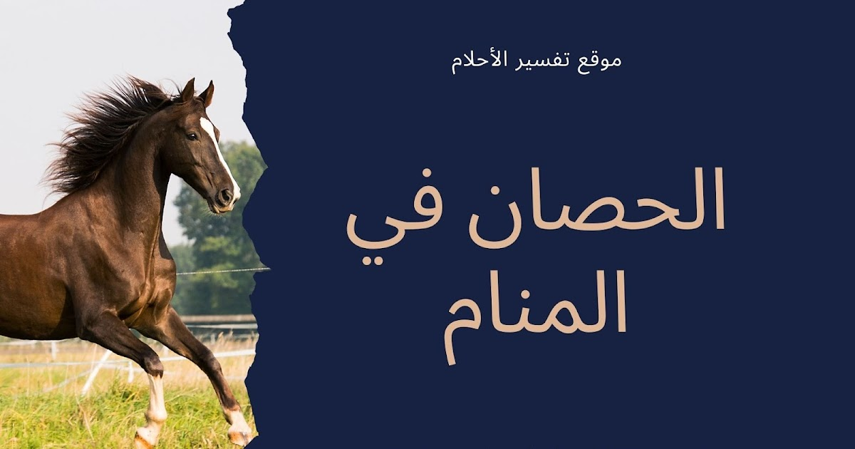 الحصان في المنام تفسير حلم الحصان للرجل و المرأة المتزوجة و الحامل و العزباء
