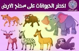 اخطر الحيوانات على سطح الارض
