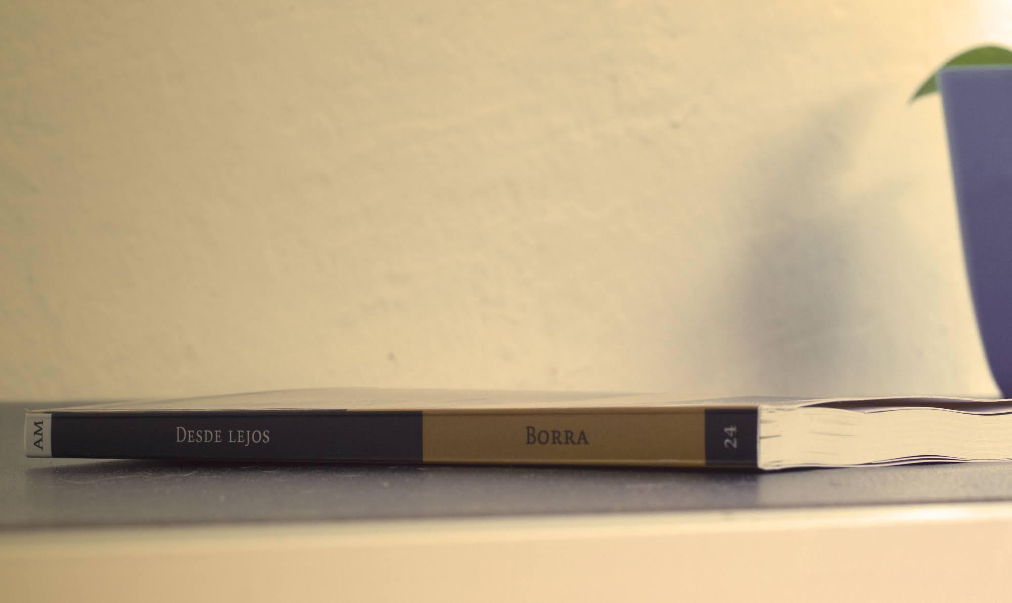 «Desde lejos» de Arturo Borra (Eolas Ediciones)