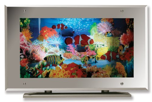 Aquarium Lamp Fish Mirror Frame Moving Picture