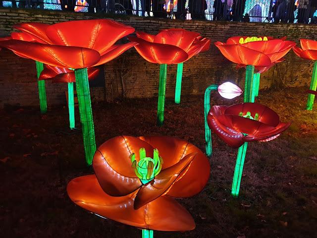 Festival Lanternes Gaillac Blog Hélidée Fleur rouge