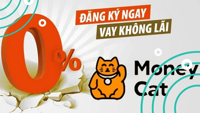 MoneyCat: 1