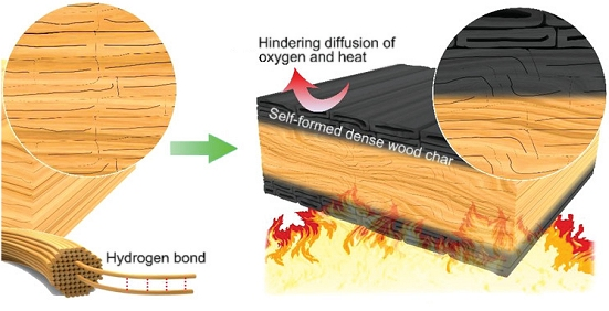 Bulletproof wood now also fire resistant