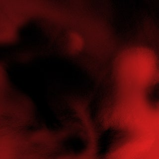 $NOT - Beautiful Havoc Music Album Reviews
