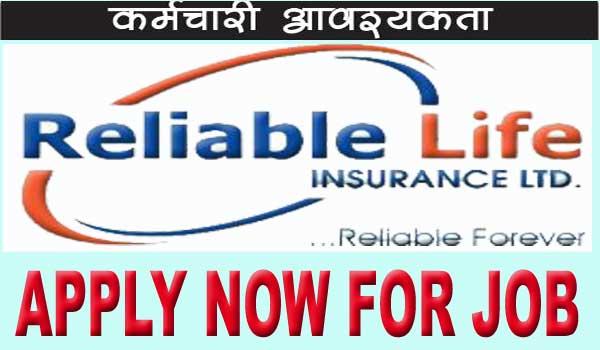 Insurance Vacancy 2020