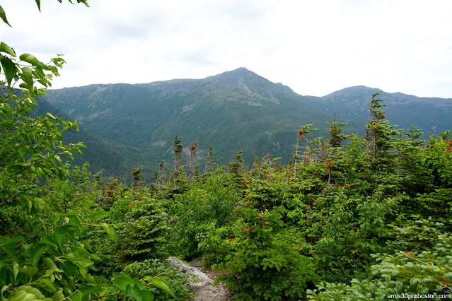 Senderos Señalizados en Mount Washington