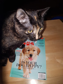 Companion Animal Psychology News April 2019. Melina checks out the new magazine