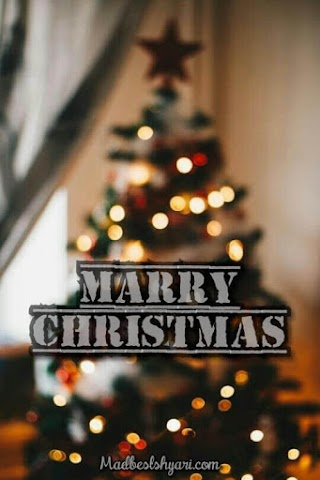 2019 Best Merry Christmas Images and Pics Wishing You 25 December Happy Christmas