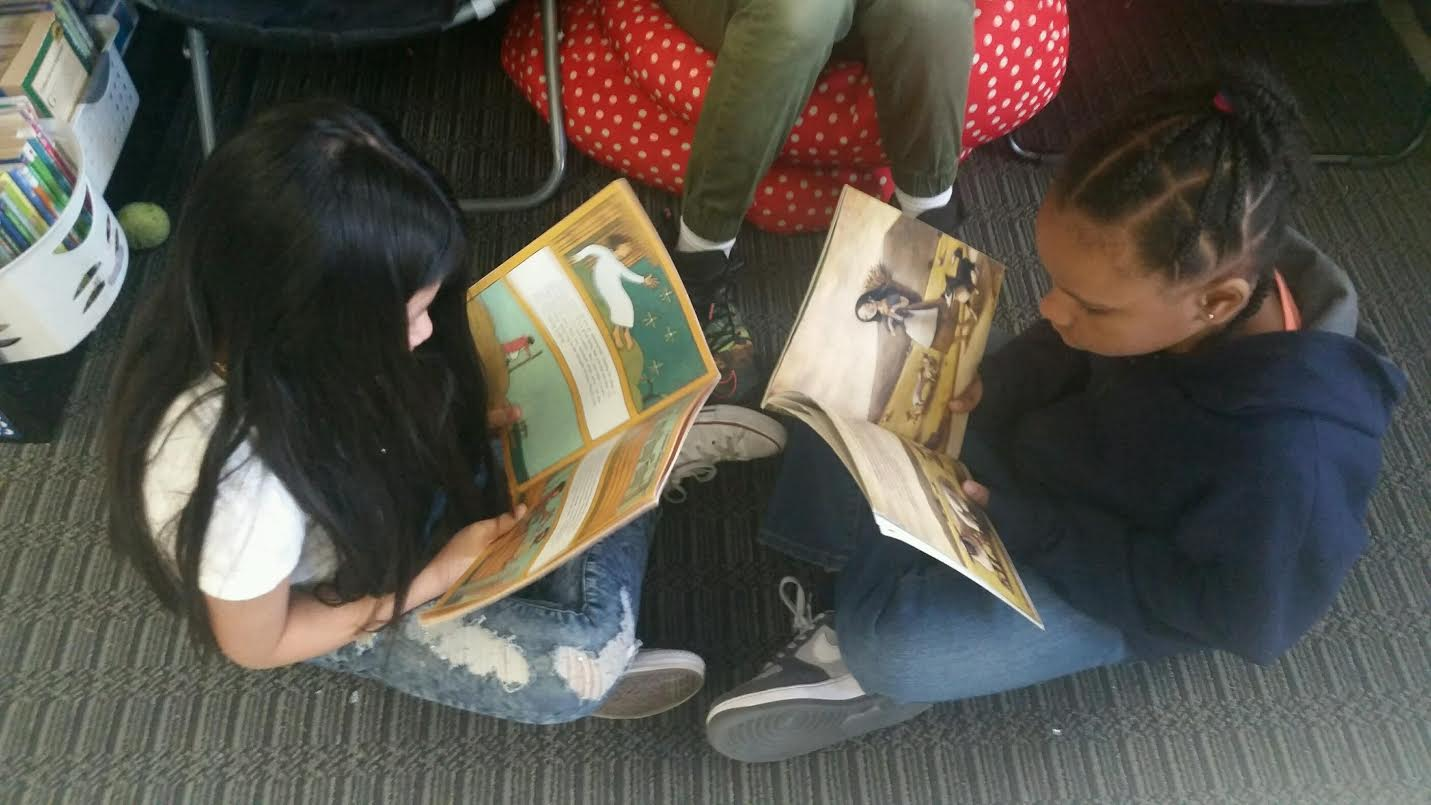 give students more choice by implementing reading partnerships in the classroom