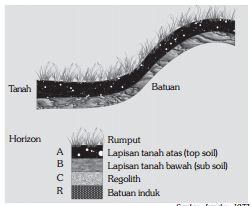 Profil Tanah (Pengertian, Komposisi, Proses Terbentuknya, & Profil)