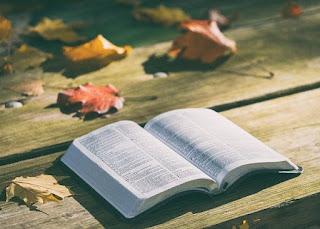 20 Versículos Sobre Riqueza na Bíblia