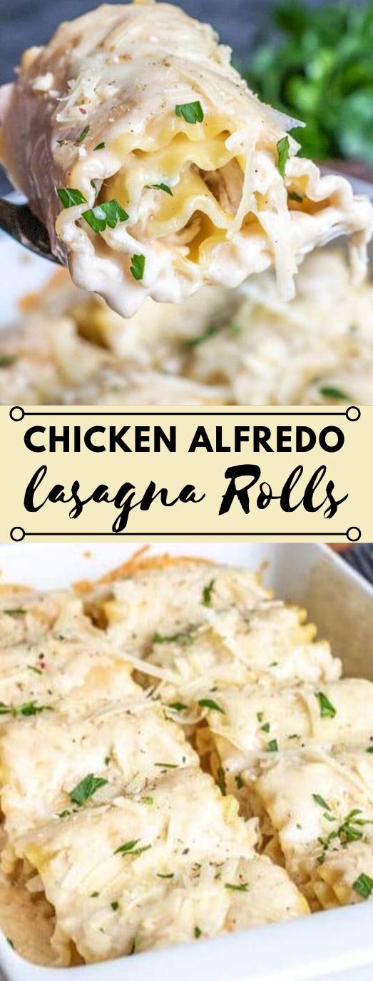CHICKEN ALFREDO LASAGNA ROLL UPS #lasagna #chicken #alfredo #cauliflower #yummy