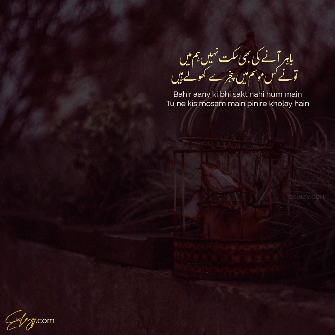 The Best Tehzeeb Hafi Poetry 2 Lines in Urdu