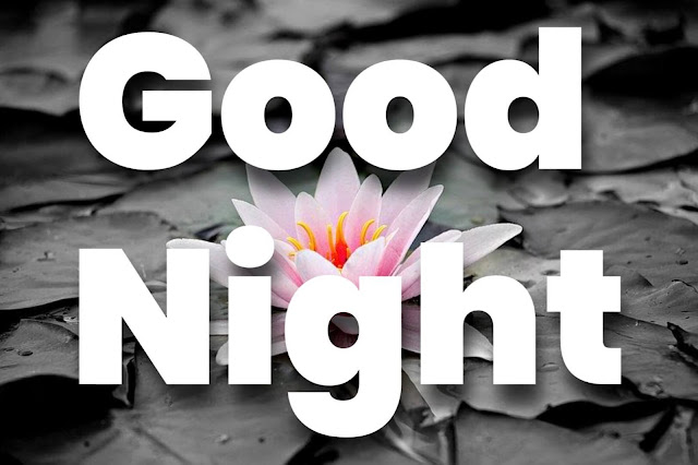 good night images with lotus flower