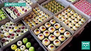 Janoopedia - Usaha Makanan
