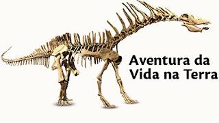 http://portal.pucminas.br/museu_novo/destaques.php