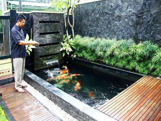 Desain Kolam Ikan Mungil Minimalis