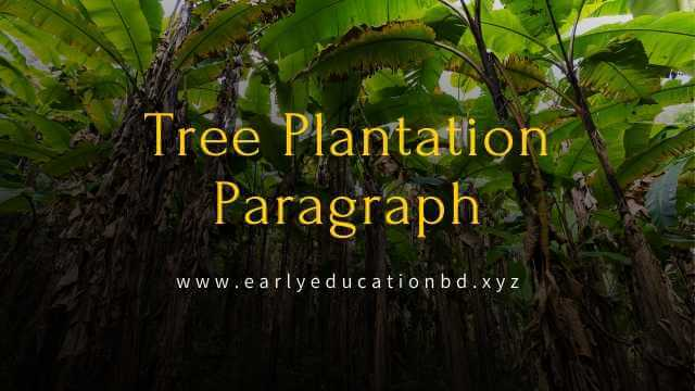 Short Paragraph on Tree Plantation Updated in 2020 | EEB