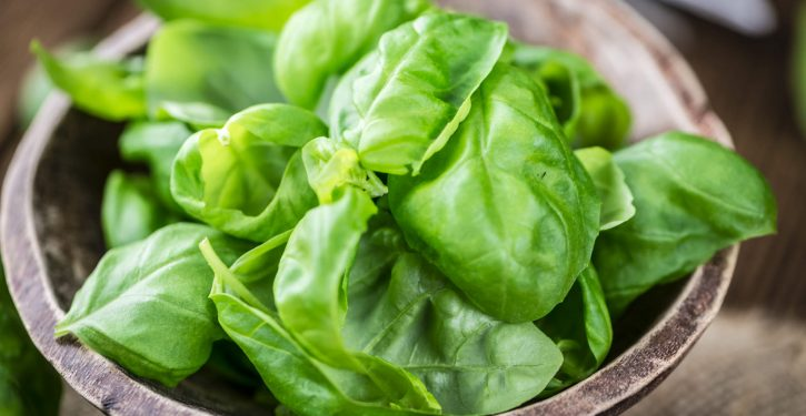 Basil Is A Natural Medicine That Heals Many Diseases