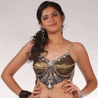 Deeksha seth sexy in saree hot gallery